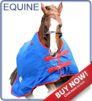 MITOTEC equine BUYNOW